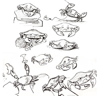KERMIT SKETCHES